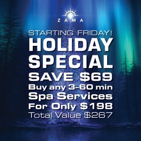 Happy Holidays! Purchase any 3 of our 60 minute spa services for just $198!