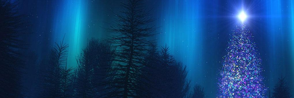 Zama_holiday_tree_layerslider