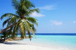 maldives-1357020_640