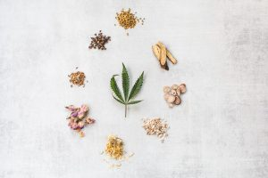 CBD Benefits and Uses for Better Health